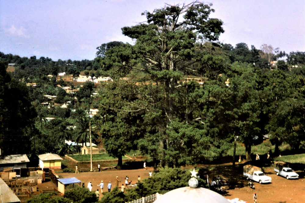View from the minaret, Foumban